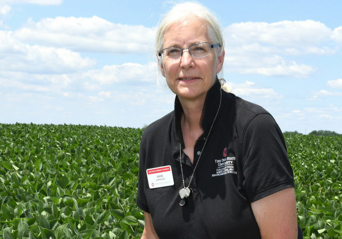 Anne Dorrance OSU Soybean Researcher Field Leader