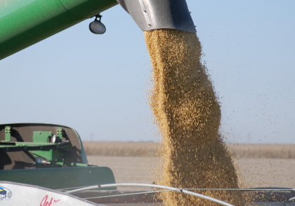 Ohio Field Leader Tips for Soybean Marketing